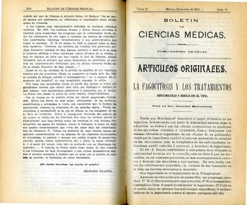 Imagen de La fagocitosis y los tratamientos sintomático y sérico en el tifo (propio), Boletín de Ciencias Médicas (alternativo)