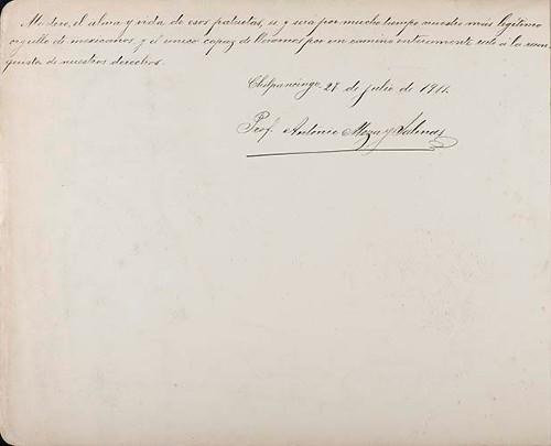 Imagen de Lámina del Prof. Antonio Meza y Salinas; para Francisco I. Madero (atribuido)