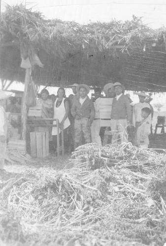 Imagen de Agrónomos y campesinos (propio)