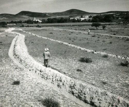 Imagen de Preparando la tierra (propio)