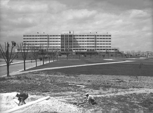 Imagen de Jardines en el Hospital Militar en las Lomas de Chapultepec (propio)