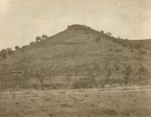 Imagen de Fotografía tomada por la Dirección de Obras Públicas para la reforestación en el Cerro de la Estrella